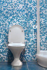 qtq80-SMitwn-200x300 Repair Clogged Toilet - Leesburg
